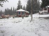 Få se om vi får behålla den första snön eller om någon kom