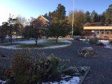 Trädgården med del av matsalen i bakgrunden.
