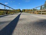 Så här ser bron ut för en groda