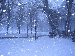 Bildresultat för snöar