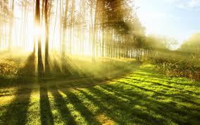Bildresultat för solsken