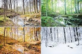 Bildresultat för sommar till vinter