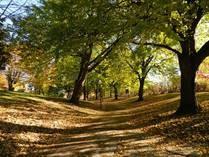 Söndag, Park, Natur, Fritid, City